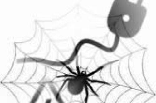 Article : Togo – Lomé : Le système « Araignée » a de beaux jours devant lui