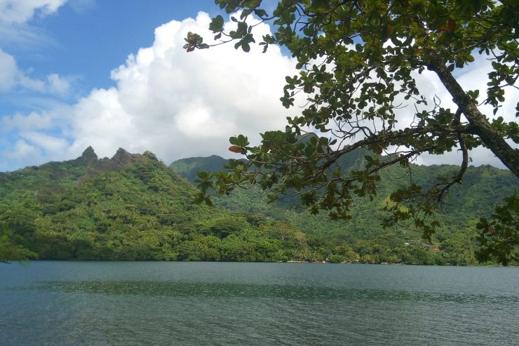Paysage sur l'île de Moorea - Photo : Roger Mawulolo