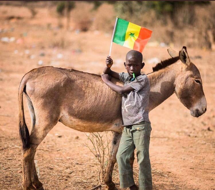 Un jeune supporter à l'intérieur du Sénégal -Photo :Ndianko Ndao (avec son autorisation)