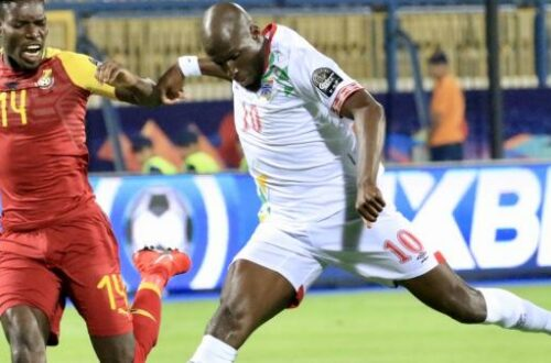 Article : CAN 2019 : une surprise nommée Bénin