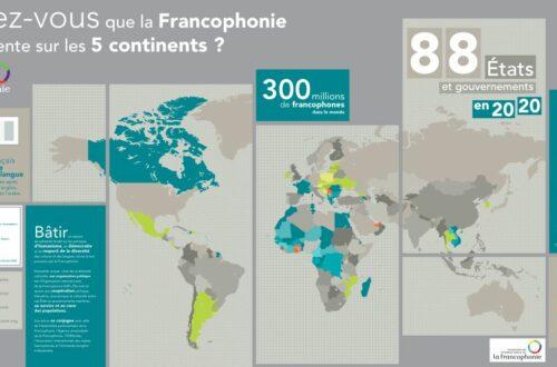 Article : 20 mars – Journée internationale de la francophonie: 12 expressions françaises du Togo